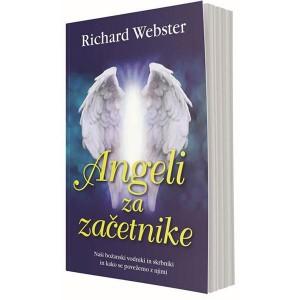Angeli za začetnike (e-knjiga)