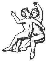Dvojčka - horoskop