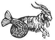 Kozorog - horoskop